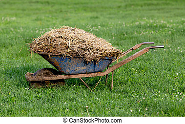 Wheelbarrow with cattle manure - Wheelbarrow with natural...