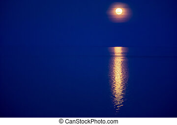 Moon light reflecting in water. Deep blue covered landscape...