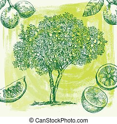 lemon tree sketch - hand drawn sketch lemon tree of on an...