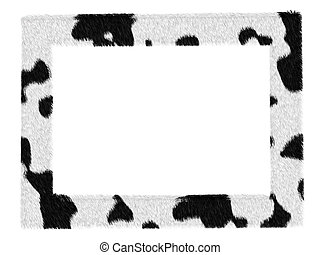 picture dalmatian pattern frame isolated over white -...