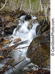 Torrent on the mountain slope - A mountain stream is running...