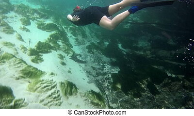 Snorkeling in Florida's Spring - Girl Snorkeler in Freash...