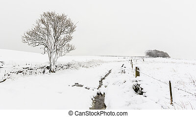 Whiteout - Countryside with snow in winter Yorkshire UK