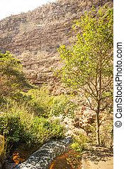 Moremi Gorge Botswana - Moremi Gorge (Goo Moremi) is a deep...