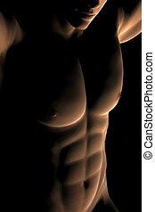 Digital Male Muscular Torso - A digitally rendered, muscular...