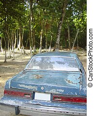 aged rusty old american car on jungle - aged rusty old...