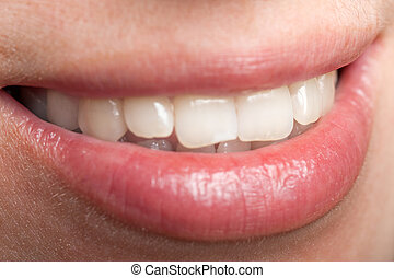 人類, 牙齒