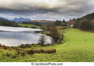 loughrigg tarn in the lake district UK