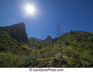 Gran Canaria, Valsequillo municipality, eroded vocanic...