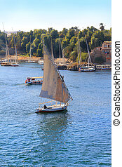 Fellucca in Aswan, Egypt - Fellucca sailing along the shore...