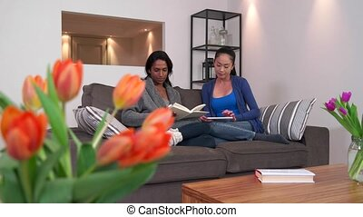 Lesbian Women Couple Girls Home - Homosexual couple, gay...