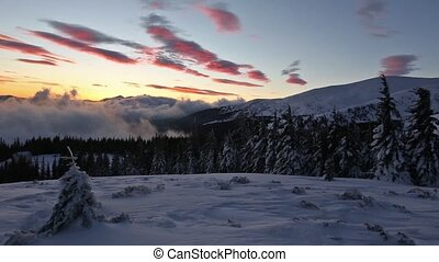 Sunrise in Winter Carpathian Mounta - Carpathian Mountains...