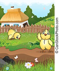 Chickens near the house - Little chicks on a green meadow in...