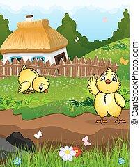 poulets, près, les, maison,
