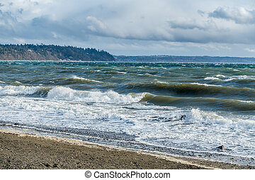 Windy Puget Sound 5 - The normally placid Puget Sound is...