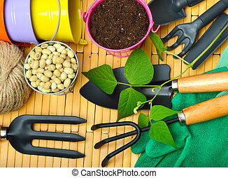 Seeds and bean sprouts with gardening tools - Seeds and bean...