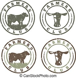 grunge labels set of farmers club with cows