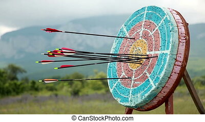 Target For Archery, Close Up