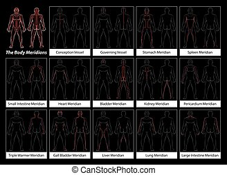 Body Meridians Detailed Diagram Bla - Body meridians -...