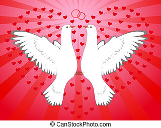 pigeons, heart - Flying, enamoured, pair of white pigeons on...