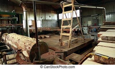 Workshop. View of worker sweeps shavings from log -...