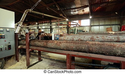 Process of sawing Log moves along conveyor belt - Process of...