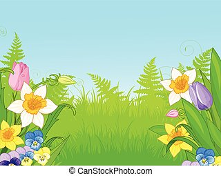 Wildflowers - Illustration of meadow of wildflowers