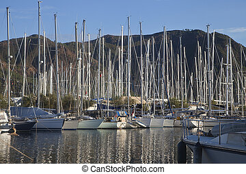 Yachts in a harbor