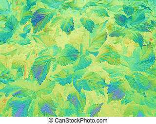 Foliage blue-green background