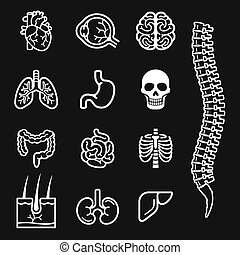 Human organs black - Human internal organs detailed icons...