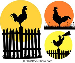 crowing rooster - vector cock silhouettes on the background...