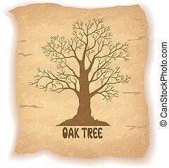 Oak Leafless Tree on Old Paper - Oak Leafless Tree...
