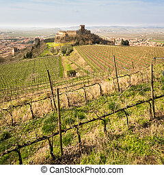 View of Soave (Italy) and its famous medieval castle. - View...