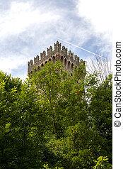 Castle's, tower, hidden, in, the, woods