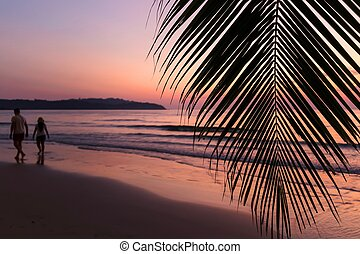Tropical sunset over palm tree with couple silhouette...