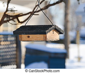 Birdfeeder Hangs From a Branch - Birdfeeder hangs from a...
