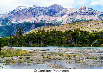 View of mountain and the forest in Patagonia, Argentina