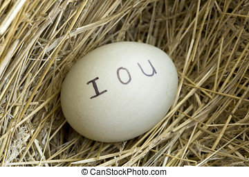 IOU in the nest egg - A duck egg with an IOU and no money