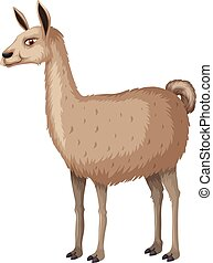 Llama with happy face illustration