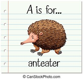 Flashcard letter A is for anteater illustration