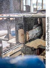 Woodworking plant. Sawdust flying from sawing logs -...