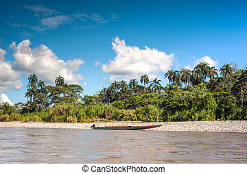 Amazonian rainforest. Napo River. Ecuador