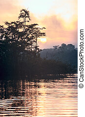 Early morning in Amazonian rainforest Lake Cuyabeno Laguna...