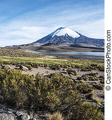 Parinacota Volcano, Lauca, Chile - Snow capped Parinacota...