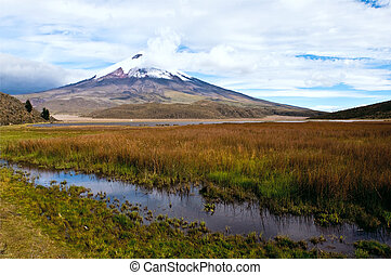 Limpiopungo Lagoon at the foot of the volcano Cotopaxi,...