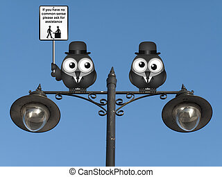 Common Sense - Comical common sense sign with birds perched...