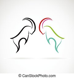 Vector image of an Sheep rams fighting on white background