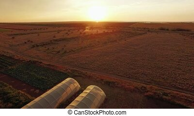 Sunset At Agricultural Field With Greenhouses - AERIAL VIEW...