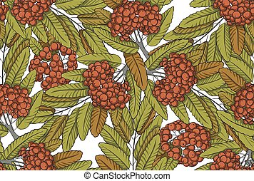 Rowan seamless pattern - Seamless pattern of rowanberry with...