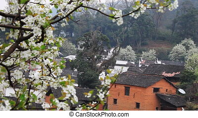 wuyuan56mov - beautiful old village in China